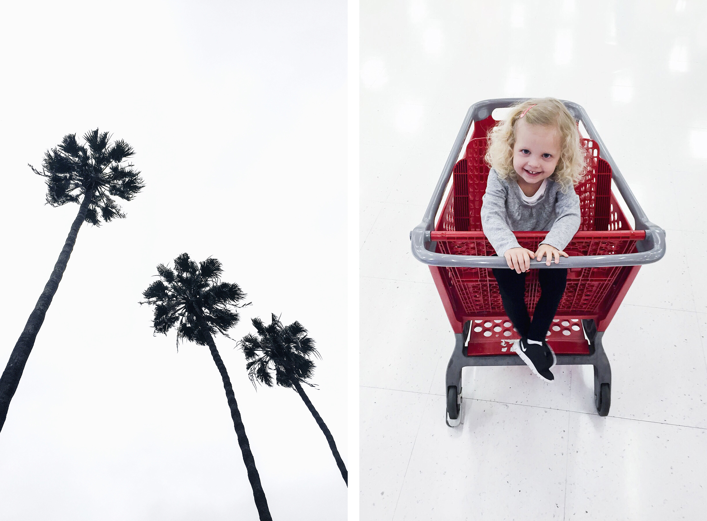 Palm trees & Target shopping, Los Angeles family travel with baby & toddler | Happy Grey Lucky